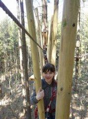 Dschungel2.JPG